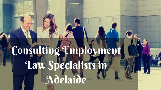Consulting Employment Law Specialists in Adelaide
